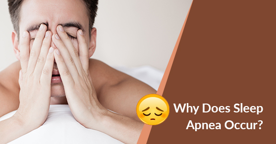 Why Does Sleep Apnea Occur?